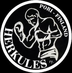 nyrkkeily_logo 4